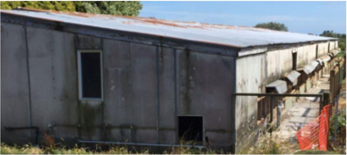 [image] Chicken shed built from asbestos cladding