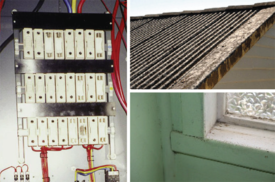 [image] Fuse box, roof and window sill possibly containing asbestos