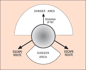 [Image] Directional fall of a chainsaw with shaded danger areas; black arrows show ideal escape routes.